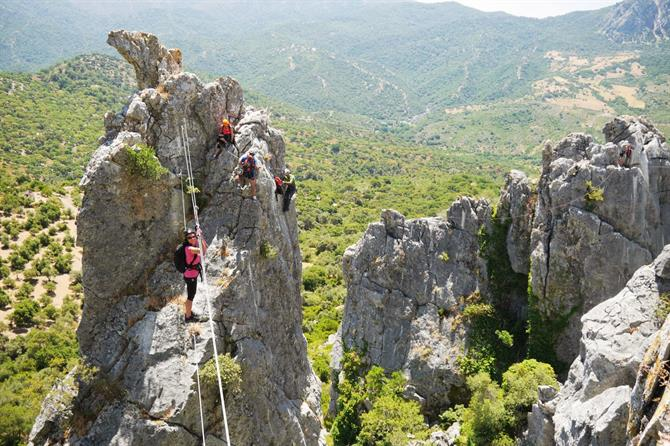 Monkey bridge Via Ferrata