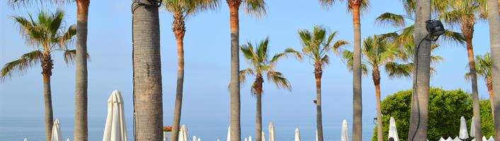 Best beaches in Marbella - Nikki beach